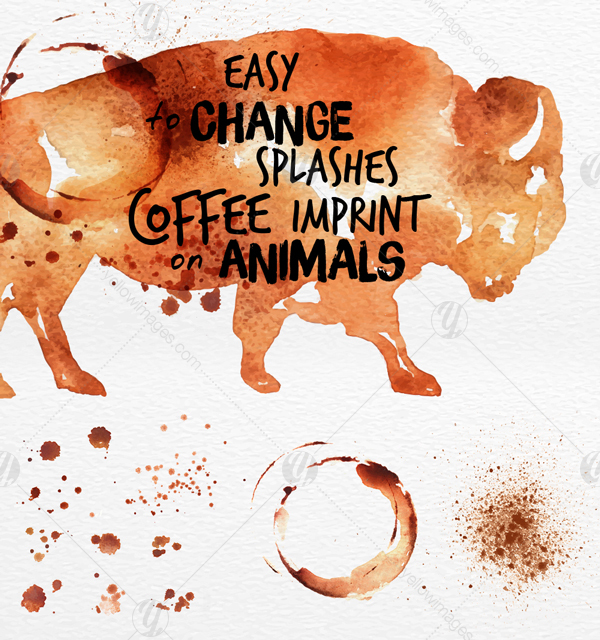 Coffee Animals Stains