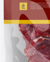 Beef Jerky Package Mockup