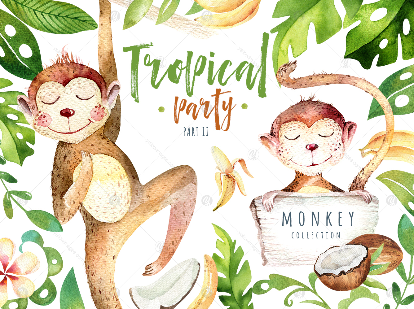 Tropical party II. Monkey collection