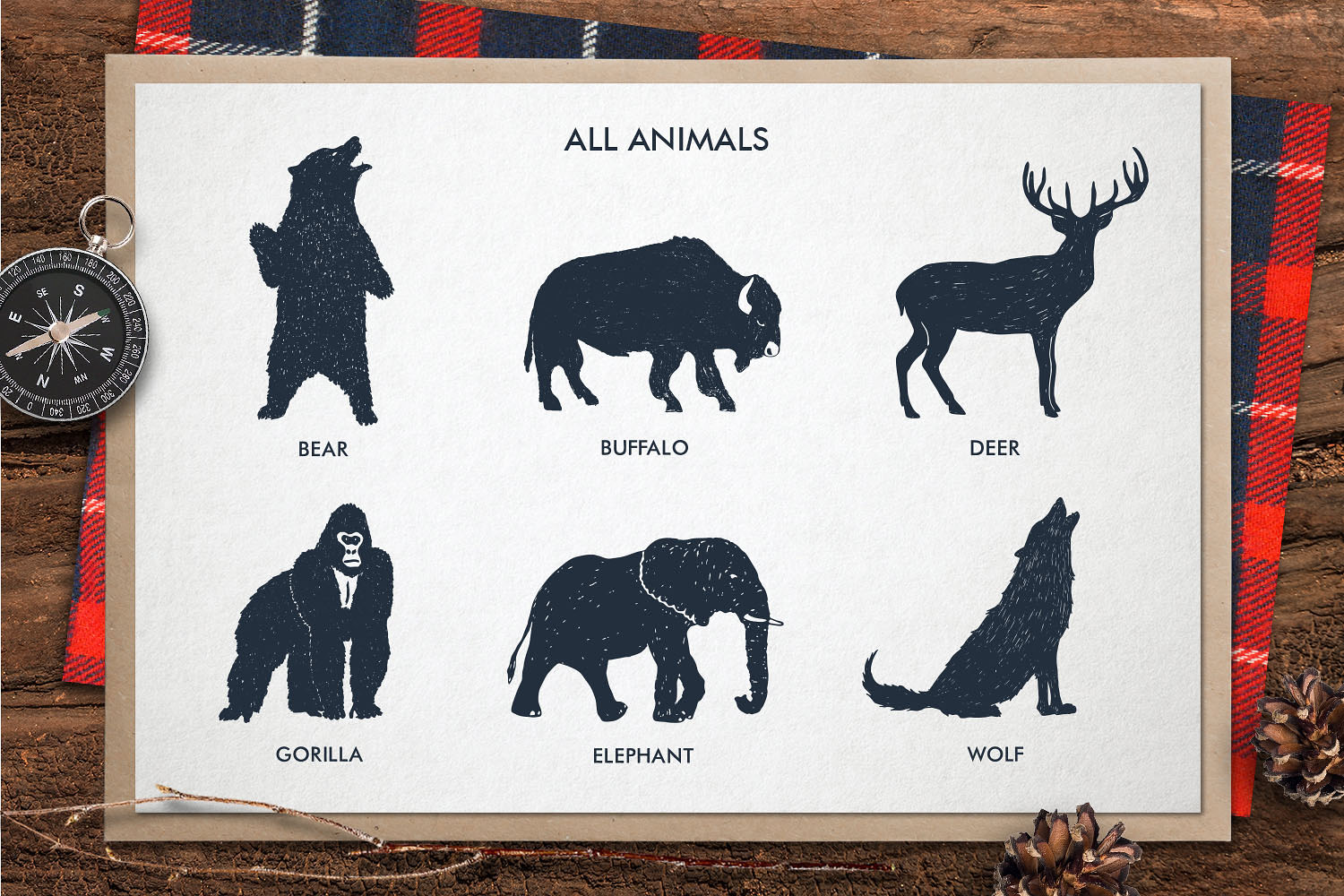 ZOONIMALS. Hand Drawn Animals