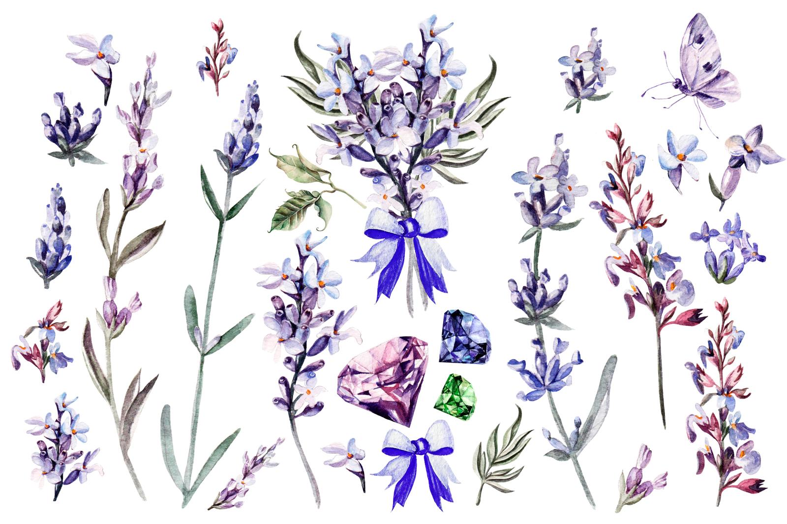 Beautiful watercolor Lavender