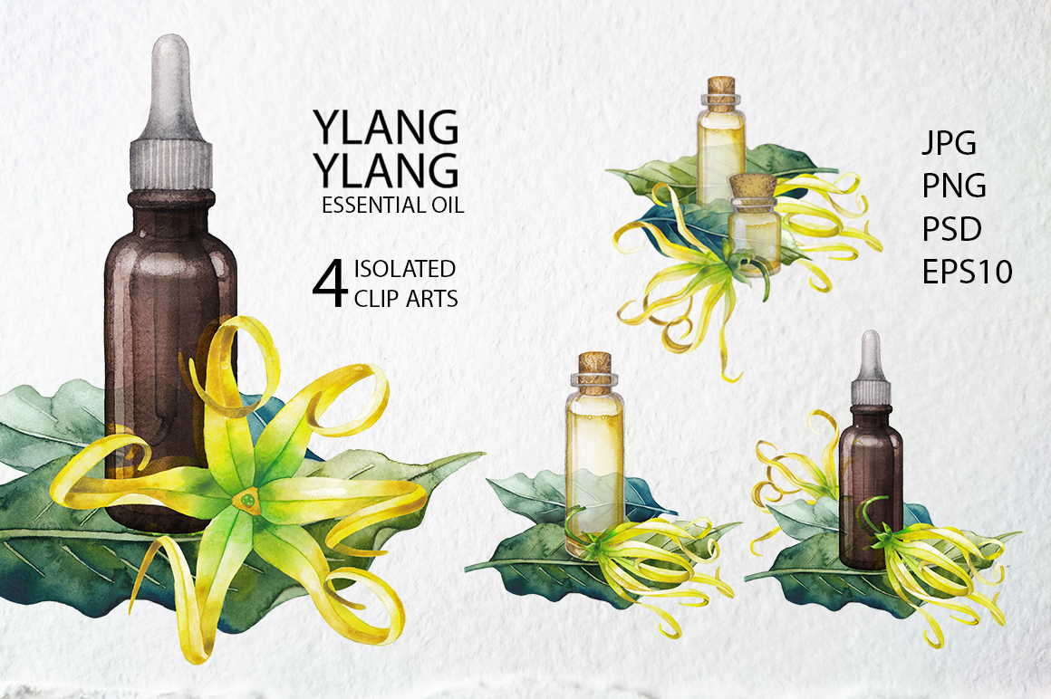Watercolor Ylang Ylang collection