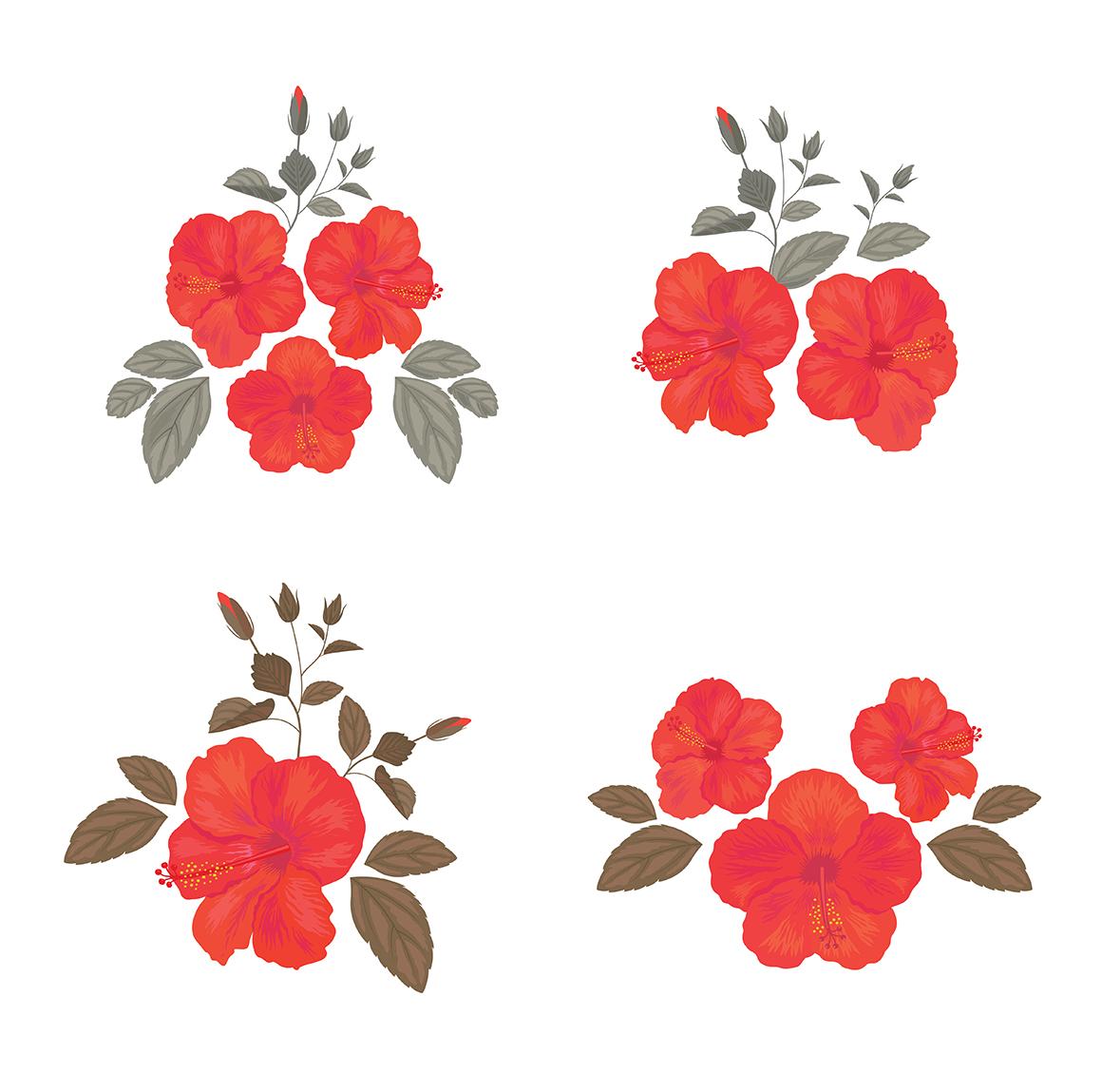 Set of flower, floral elements, frames, seamless patterns.