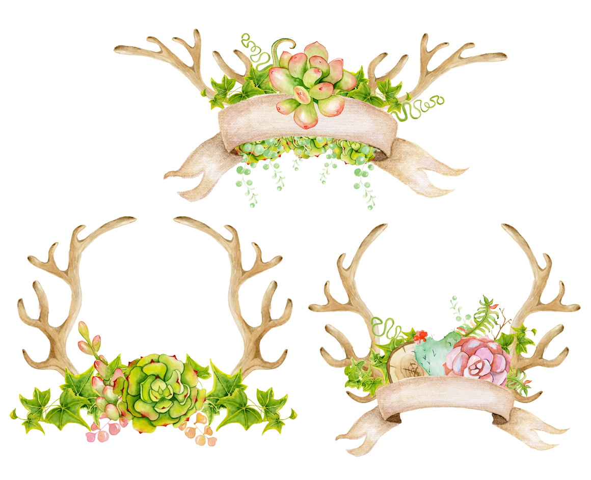 Antlers and succulents