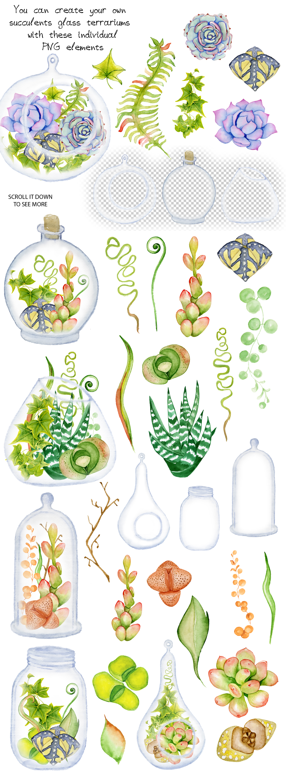 Succulents Terrarium Creator Vol 2 In Illustrations On Yellow Images Creative Store