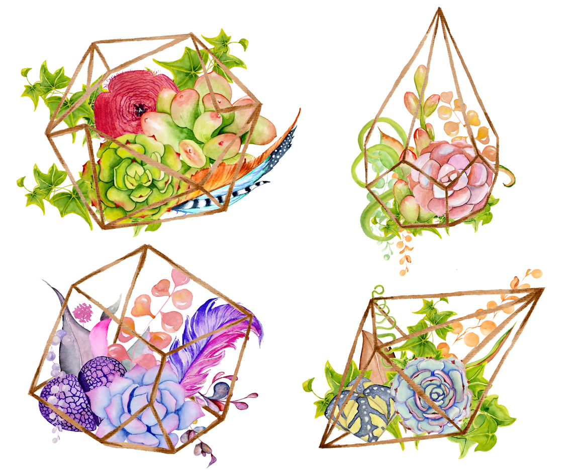 Succulents Terrarium Creator Vol 1 In Illustrations On Yellow Images Creative Store