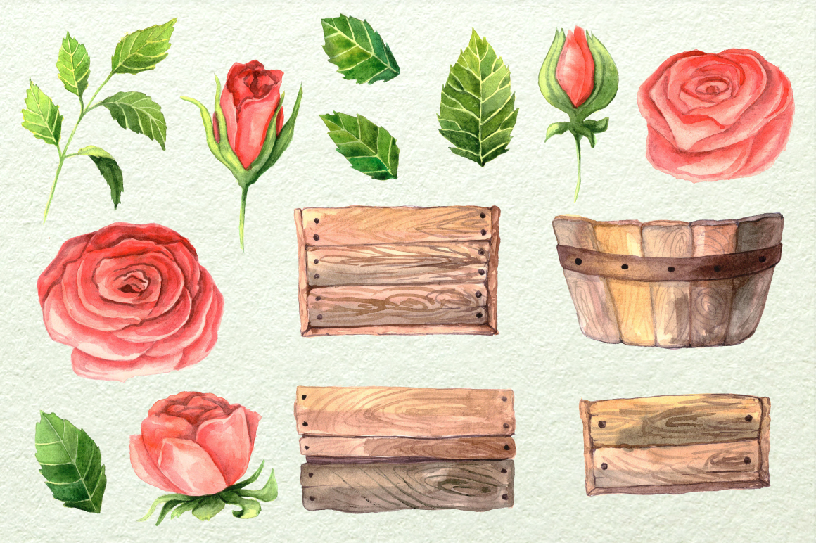 Watercolor Roses in Boxes