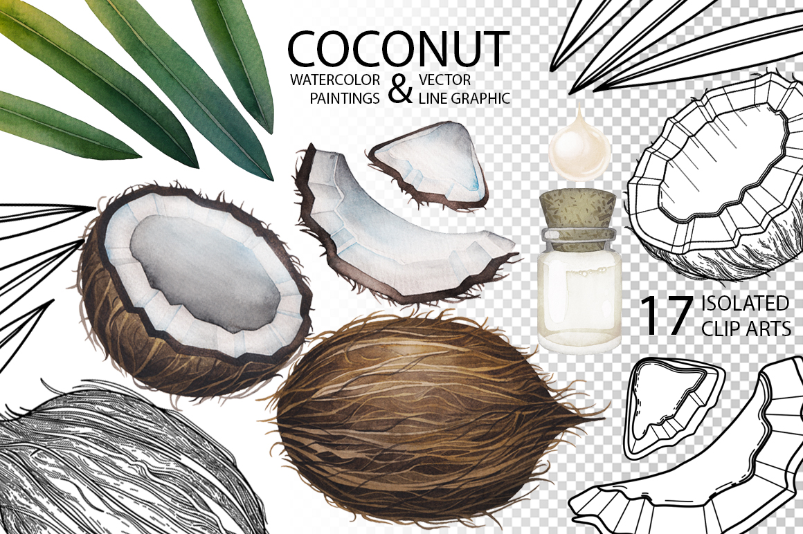 Watercolor and graphic coconut