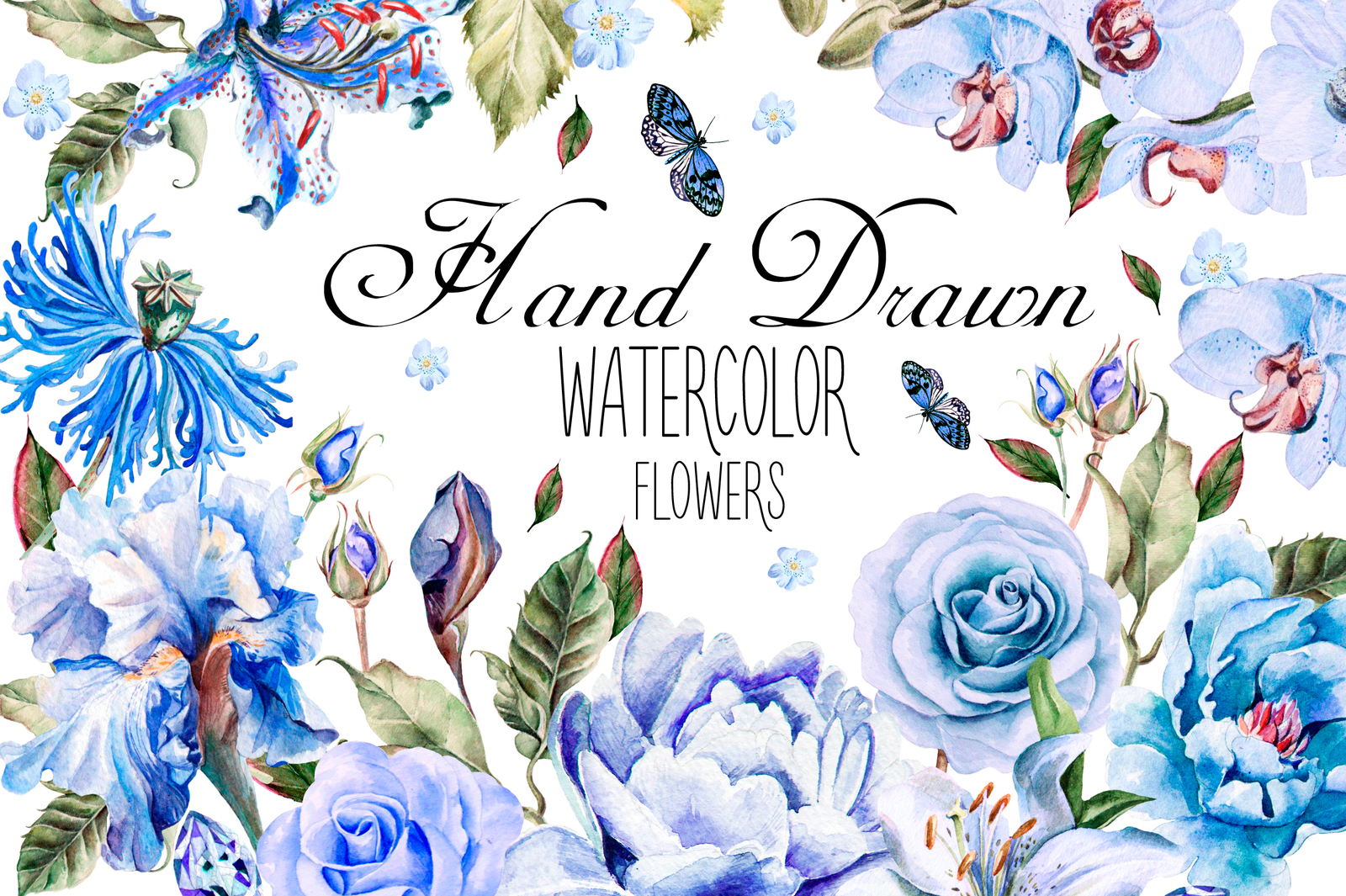Hand Drawn Watercolor Flowers 86 PNG