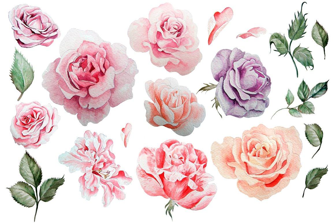 HandDrawn Watercolor Bundle FLOWERS2