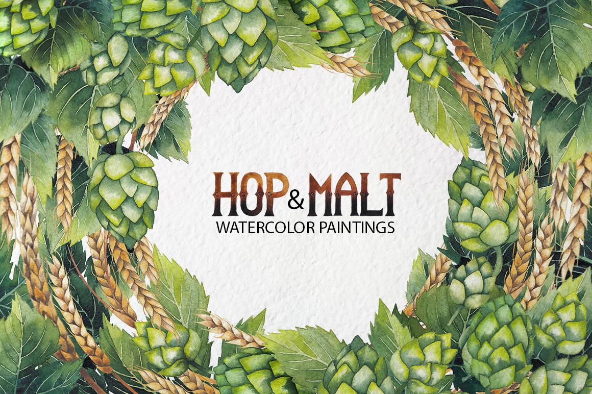 Watercolor hop and malt