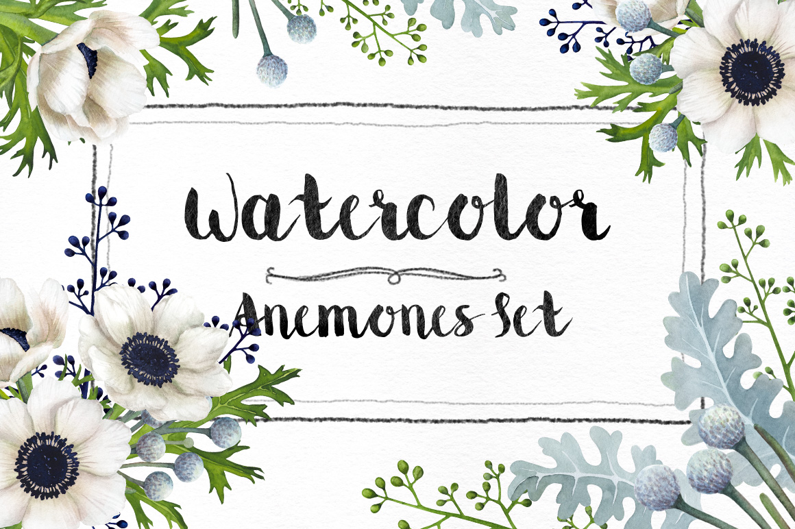 Watercolor Anemones Set