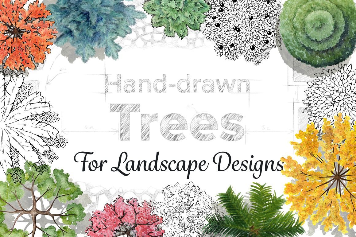 Hand-Drawn Trees
