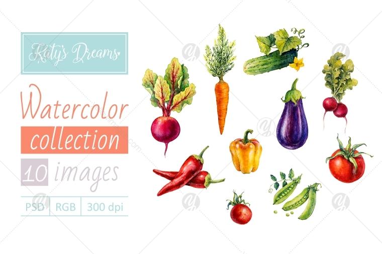 Watercolor set / Vegetables