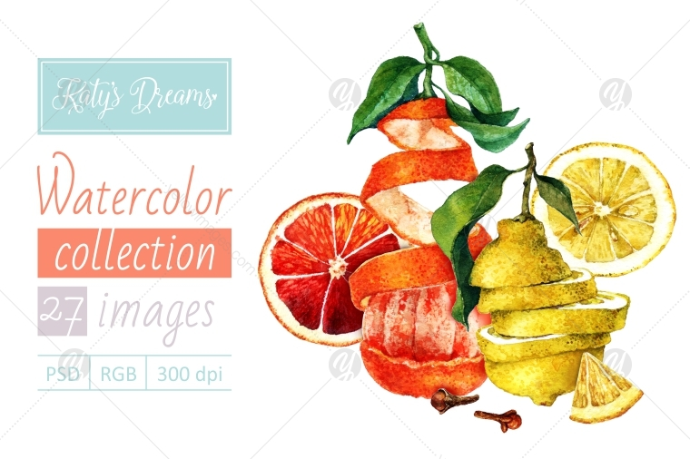 Watercolor set / Lemons and oranges