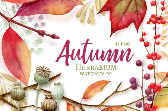 Autumn Herbarium Watercolor Clipart