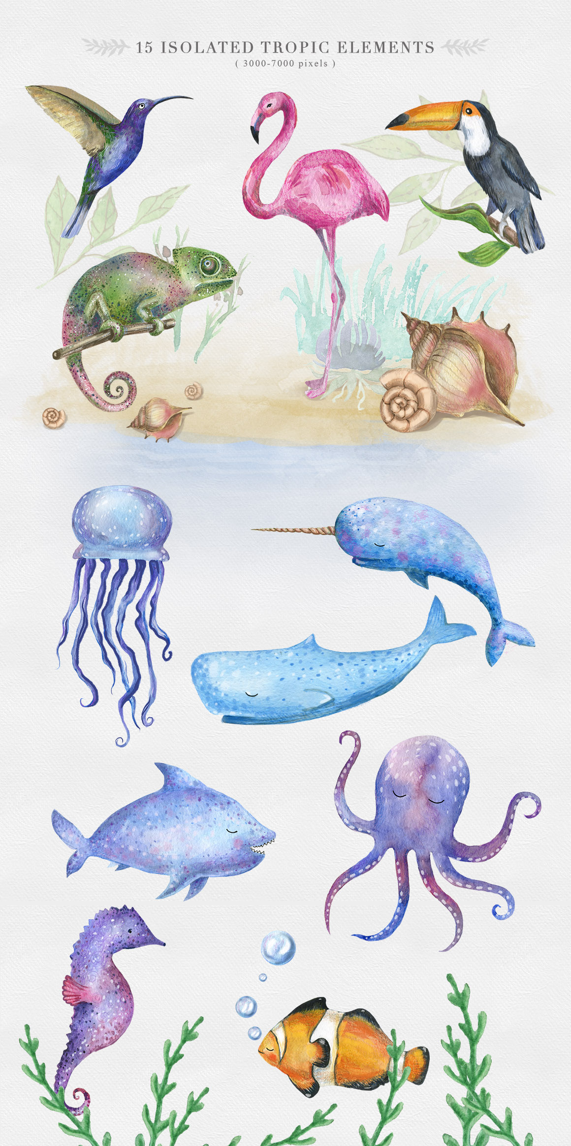 Cute Animals Watercolor Collection