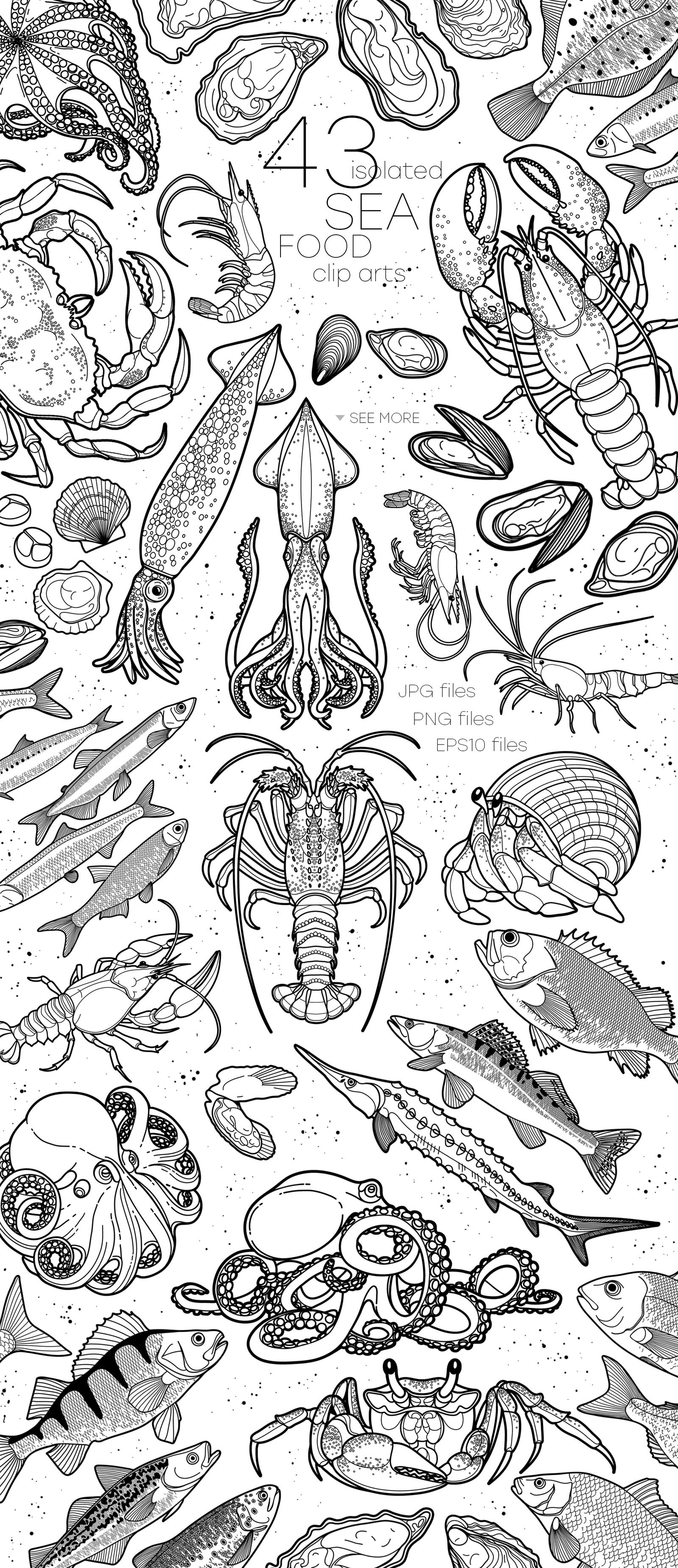 Seafood graphics