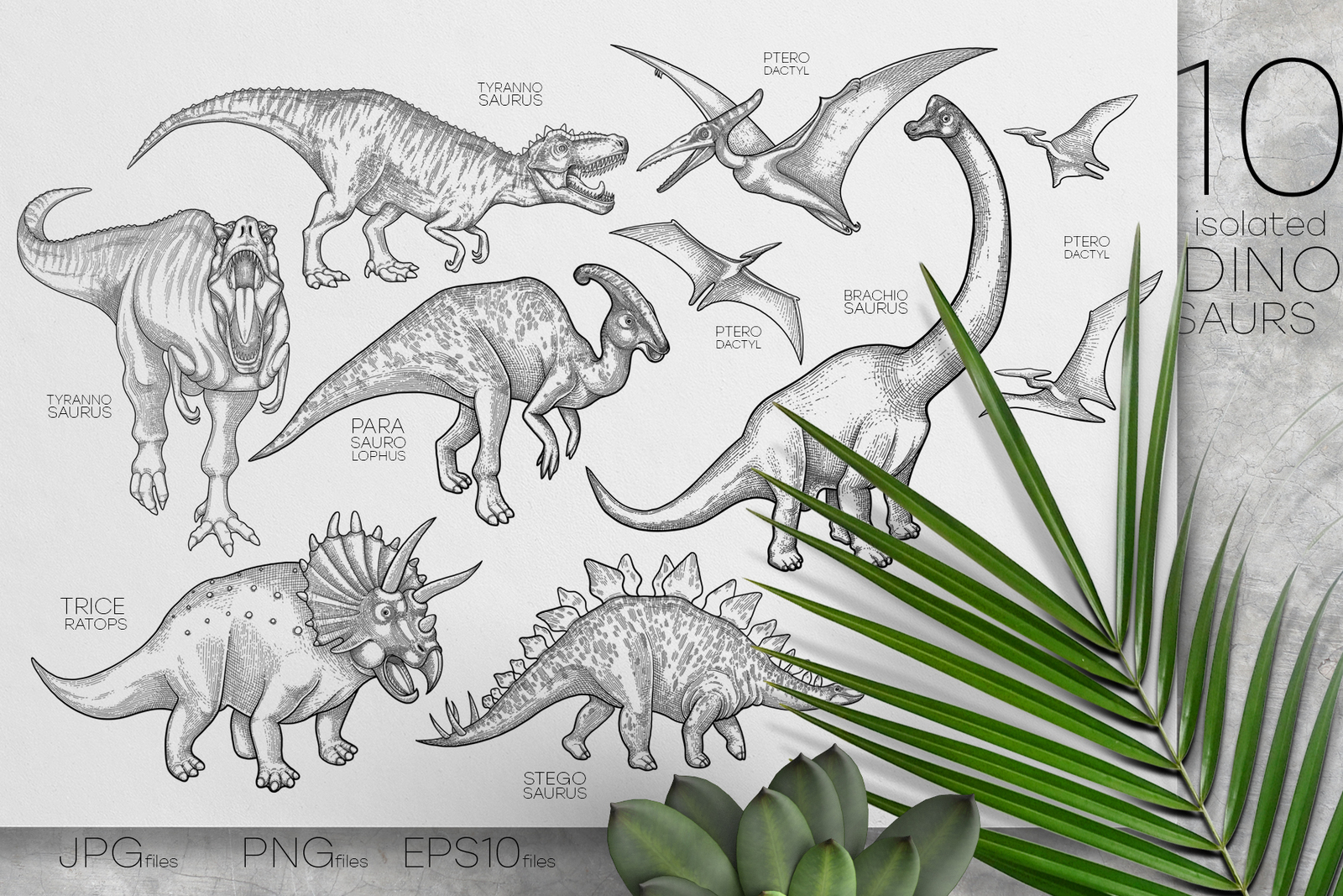 Graphic Dinosaurs - coloring pages