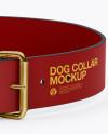 Matte Dog Collar Mockup - Front View (High-Angle Shot)