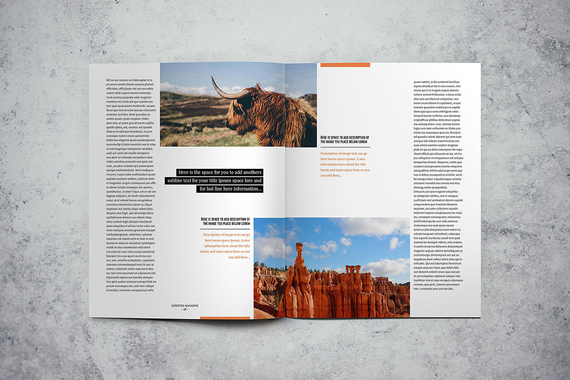 LifeStyle magazine Indesign Template