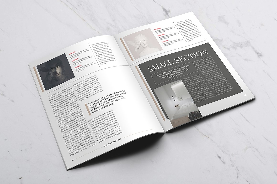 Multipurpose Magazine 6 Template