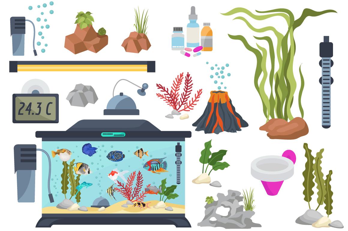 Freshwater aquarium fish BIG SET