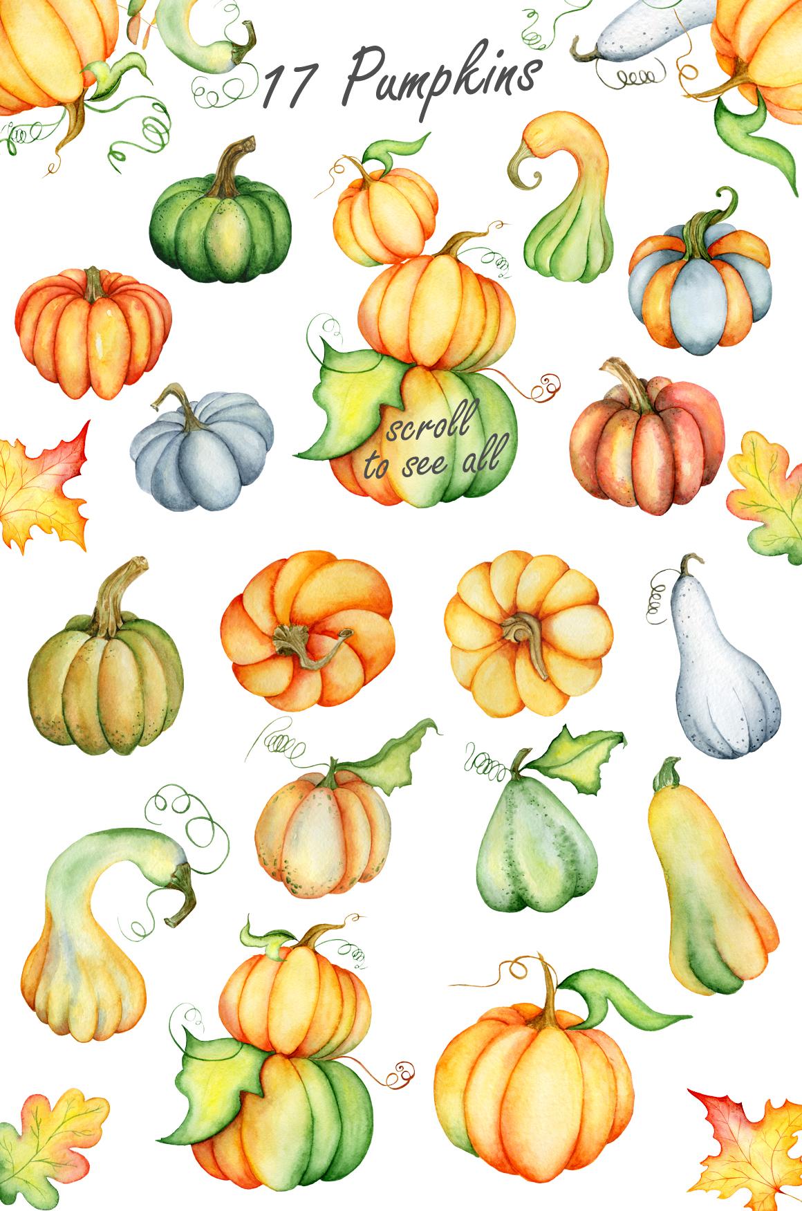 Thanksgiving pumpkins Fall watercolor Autumn clipart