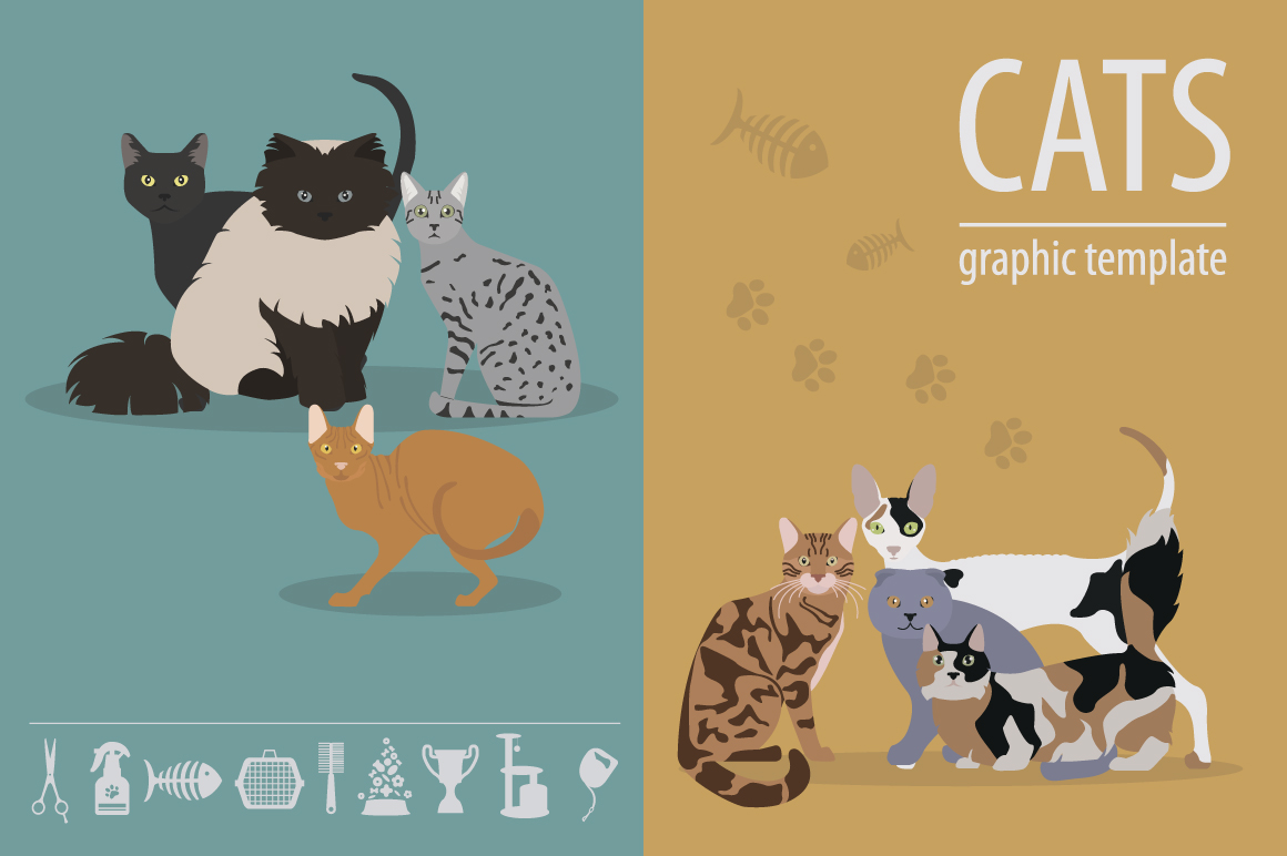 All world CAT  BREEDS in one set