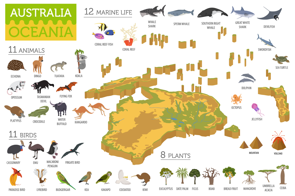 Australasia isometry flora&fauna map