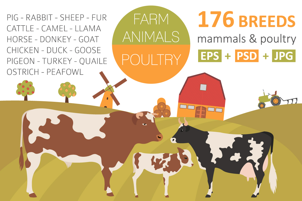 Farm animal and poultry big set