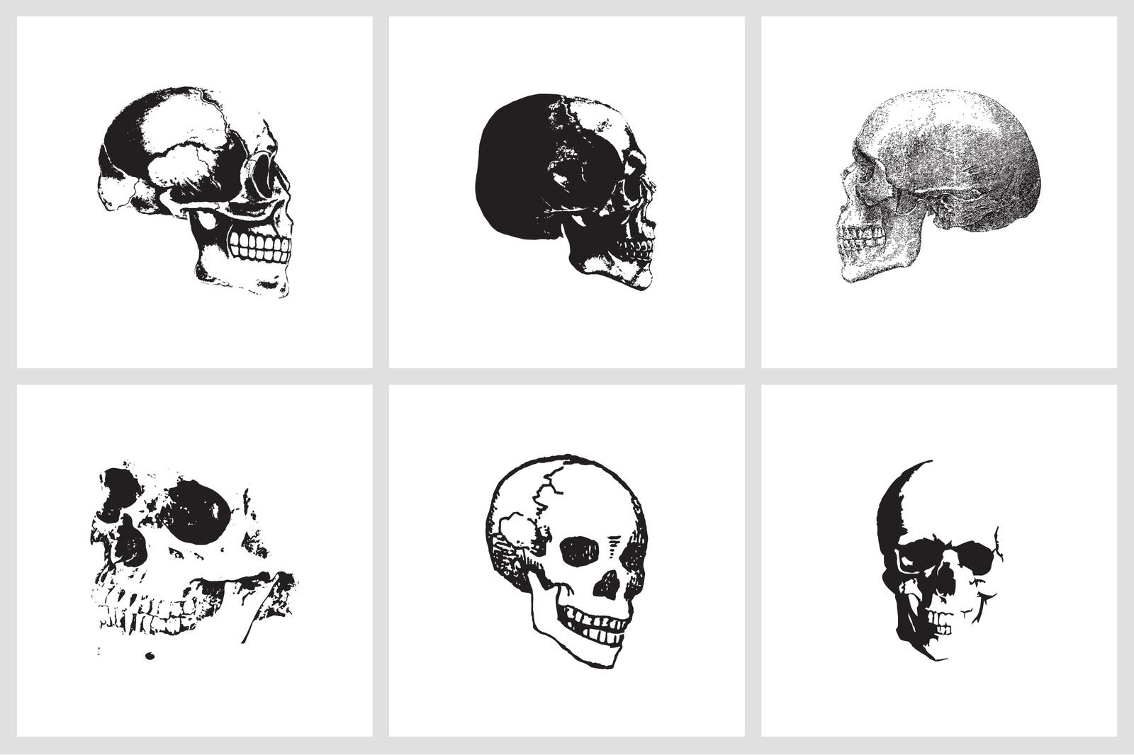 Skull EPS Vectors