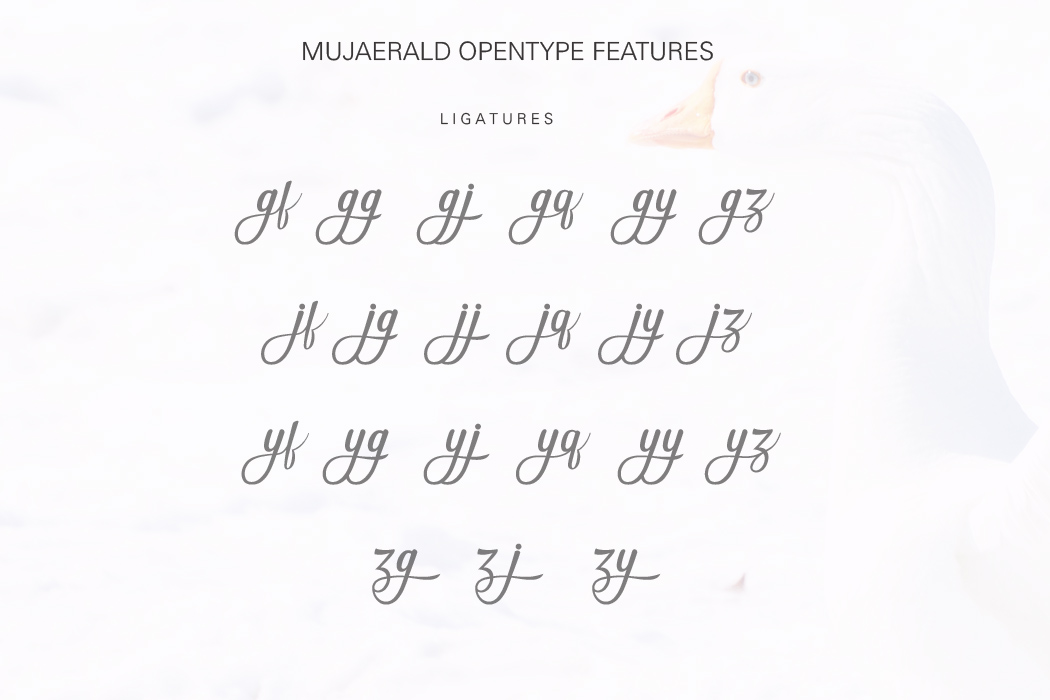 Mujaerald Font