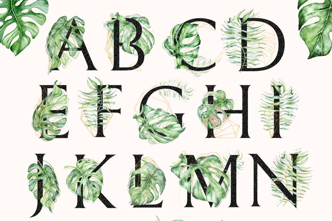 Monstera Watercolor Black Alphabet