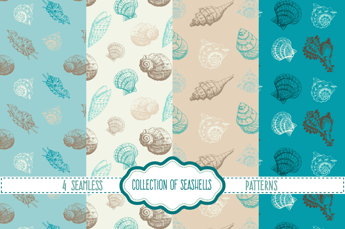 Hand drawn collection of 8 seashells