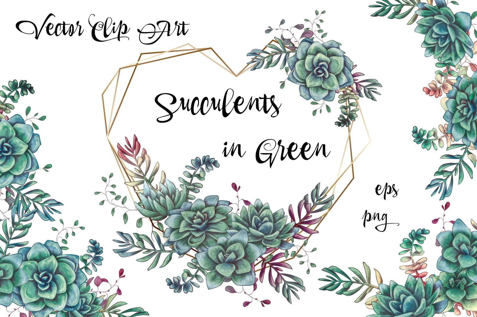 Succulents in green