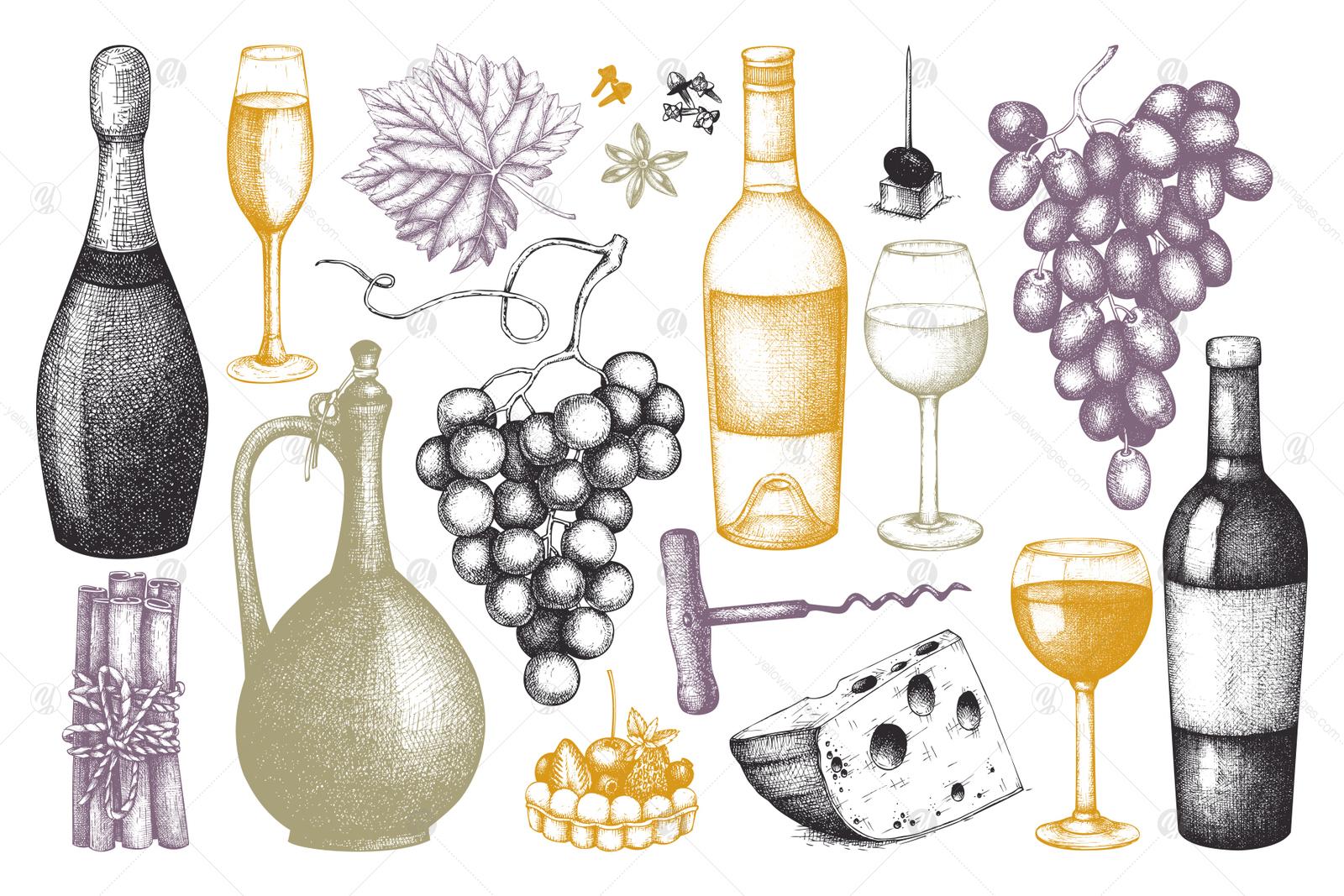 Red & White Wine Illustations Set