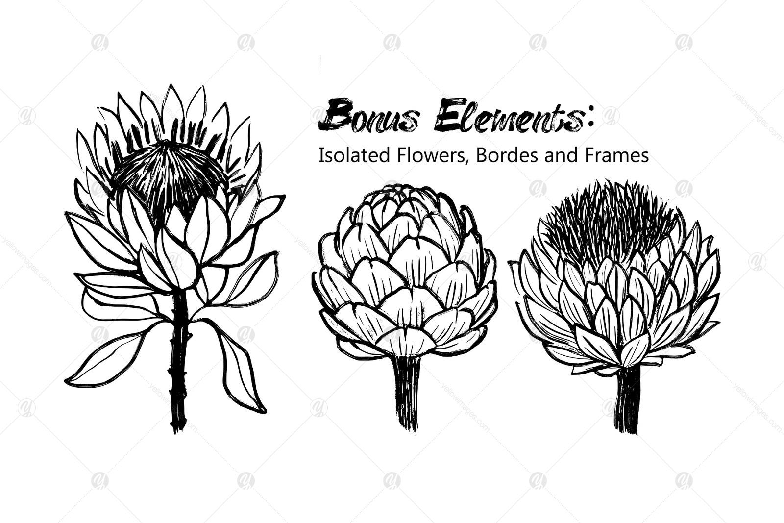 Inky Plants: 15 Botanical Patterns+