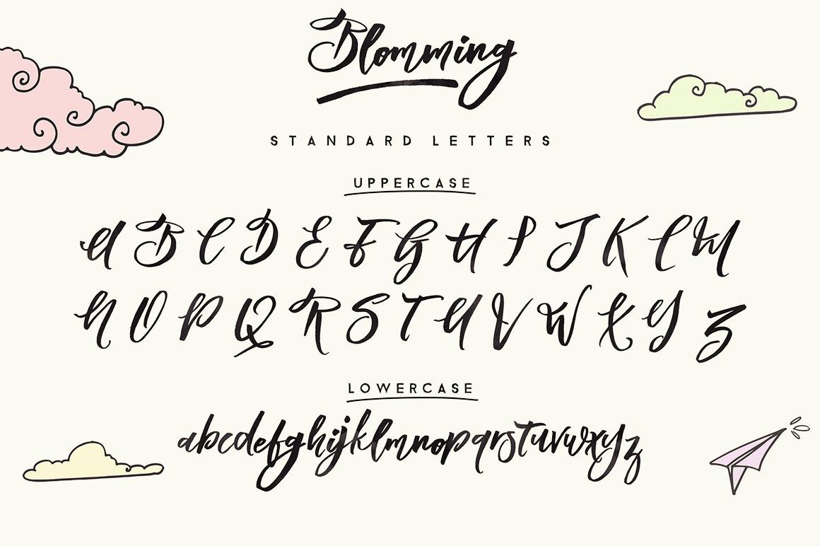 Blomming - Brush Font