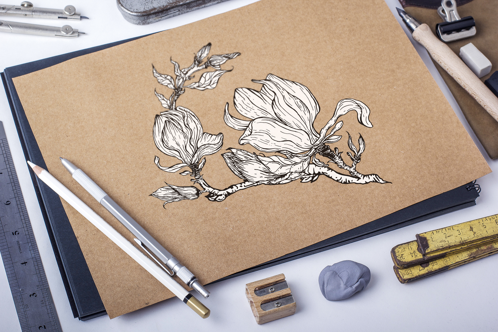 Graphic floral Magnolia elements for design