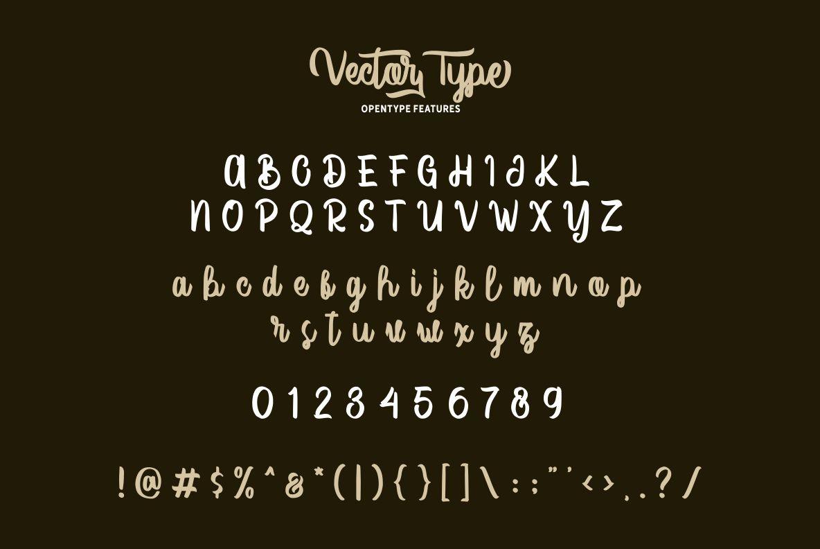 Vector Type