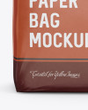 Glossy Paper Bag Mockup - Front View