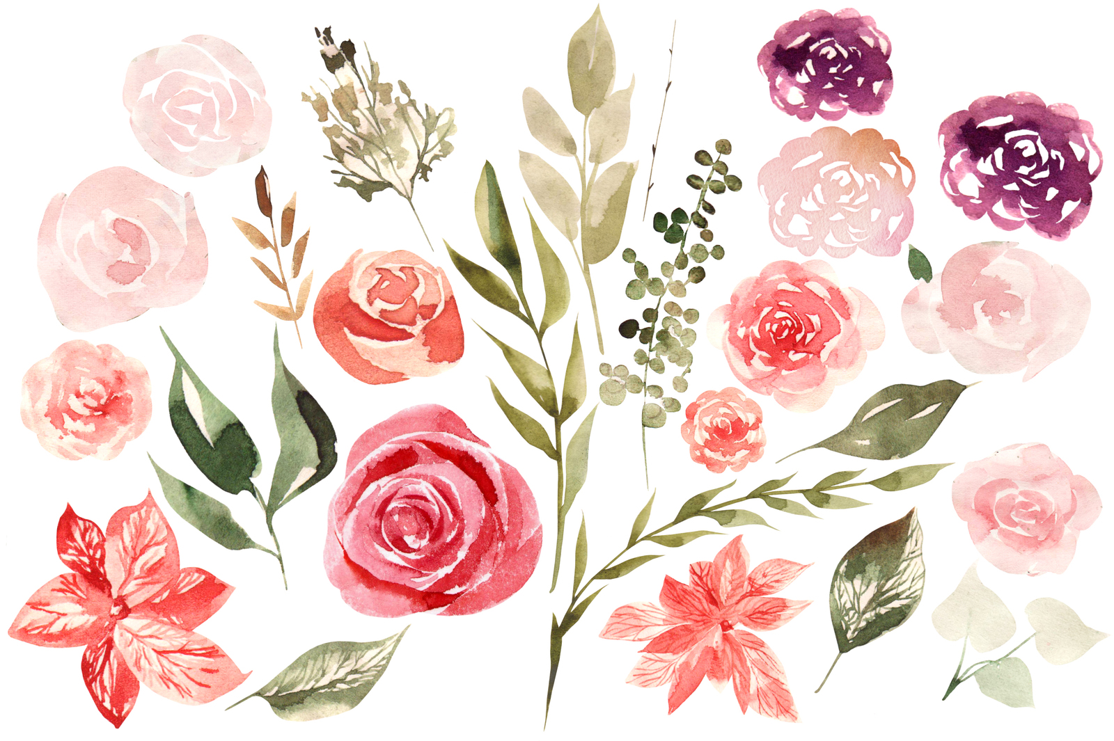 Watercolor Blooming Flowers