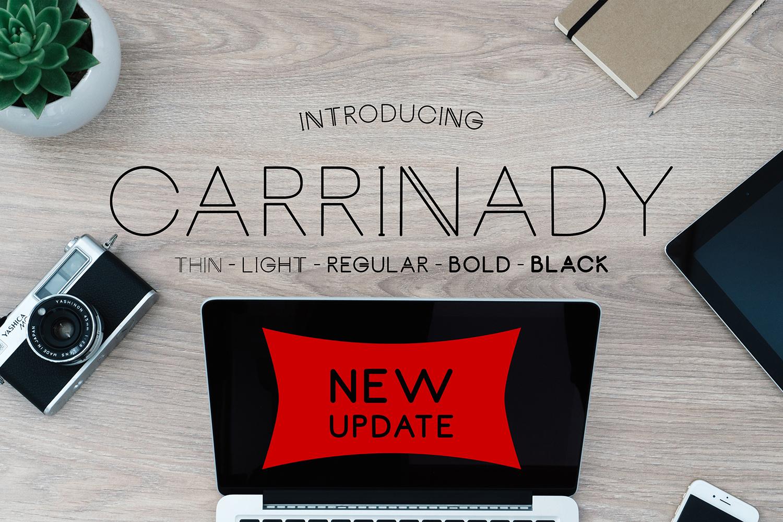 Carrinady Logotype - Family Font