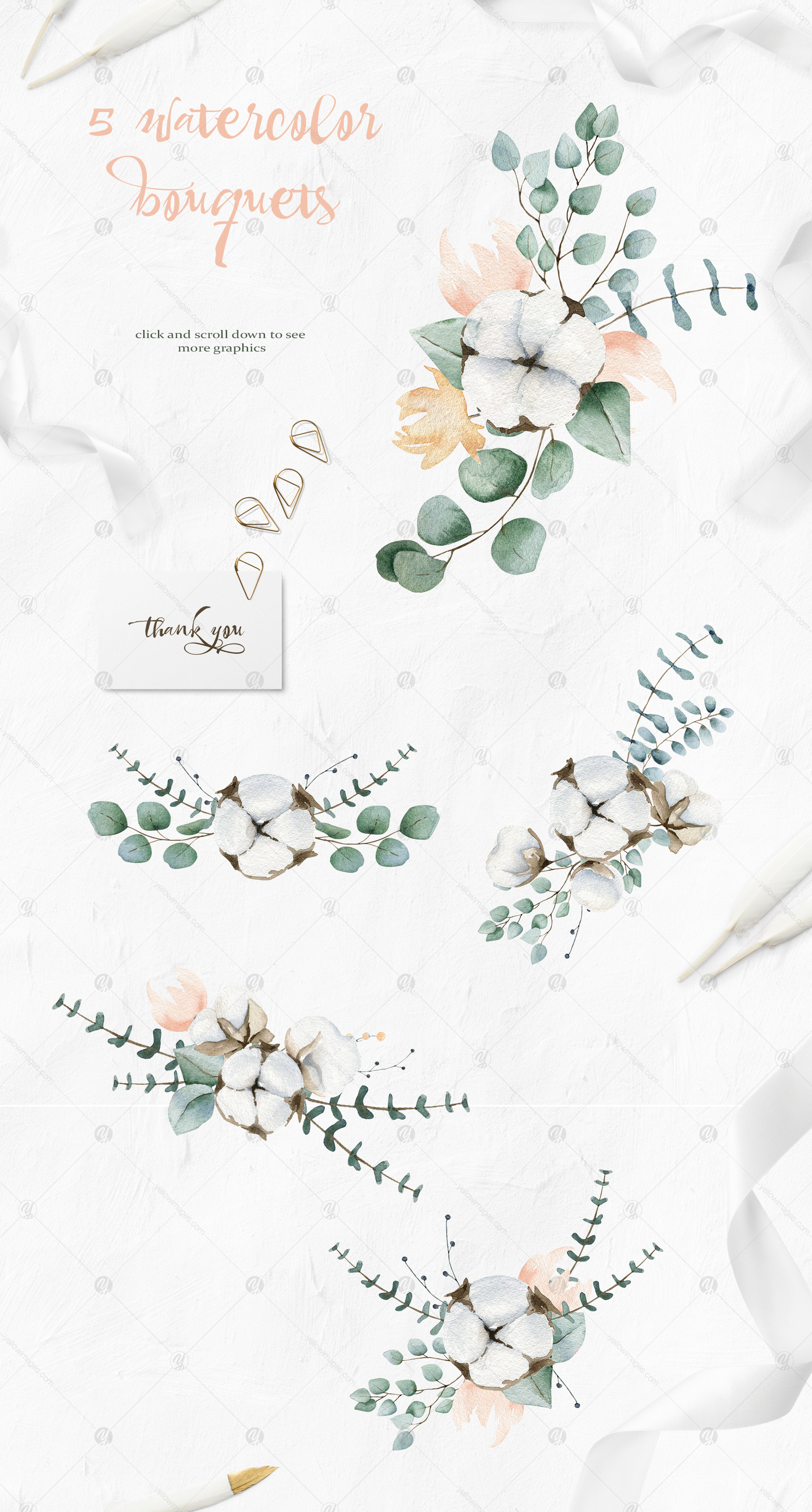 Cotton and Eucalyptus watercolor clipart collection