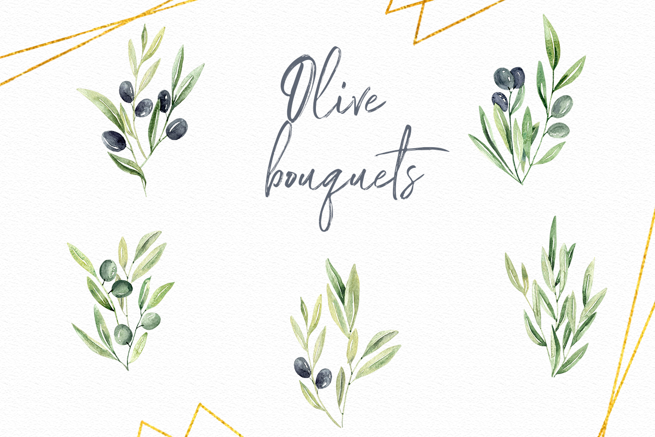 Watercolor Olive branches