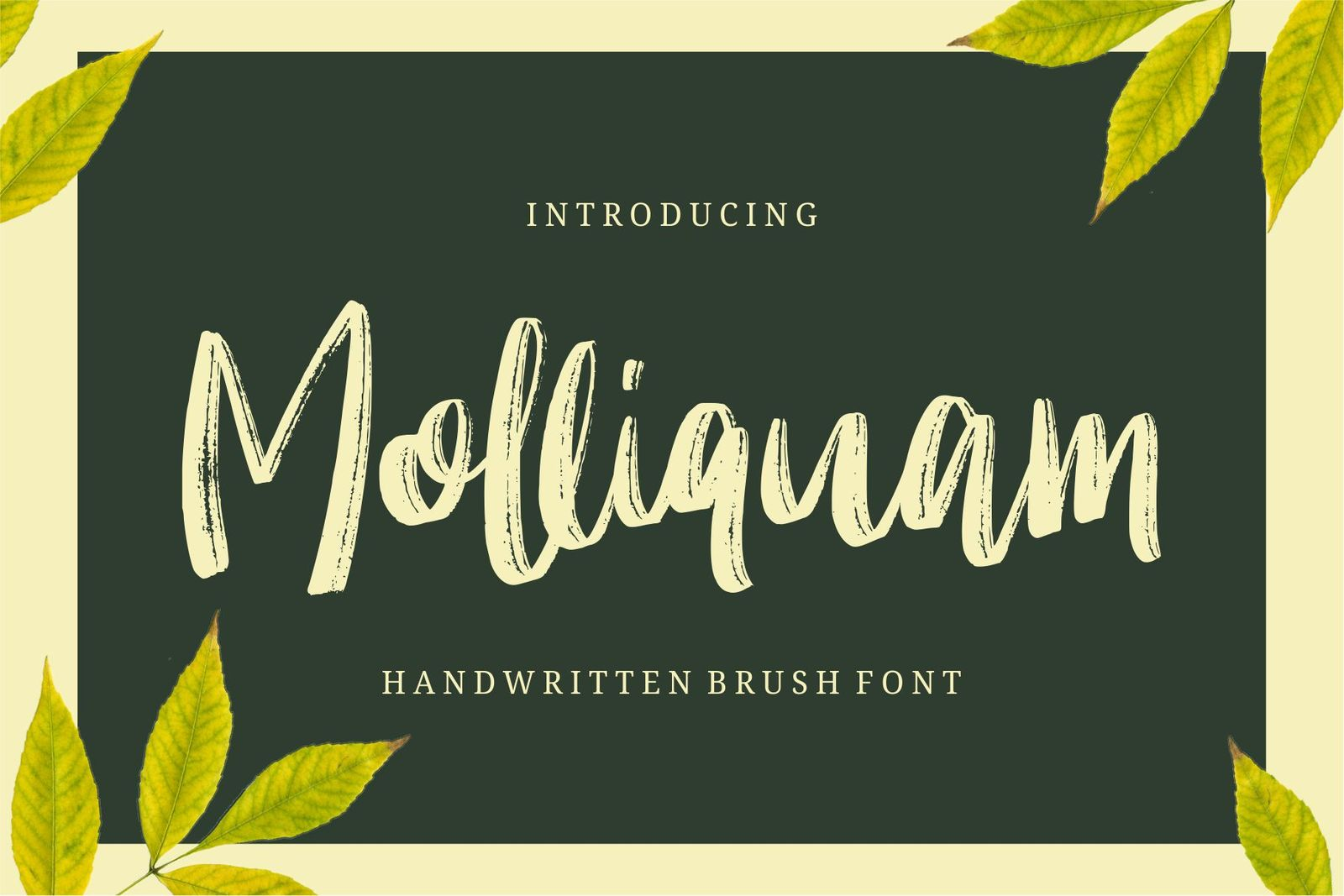 Molliquam - Handwritting Fonts