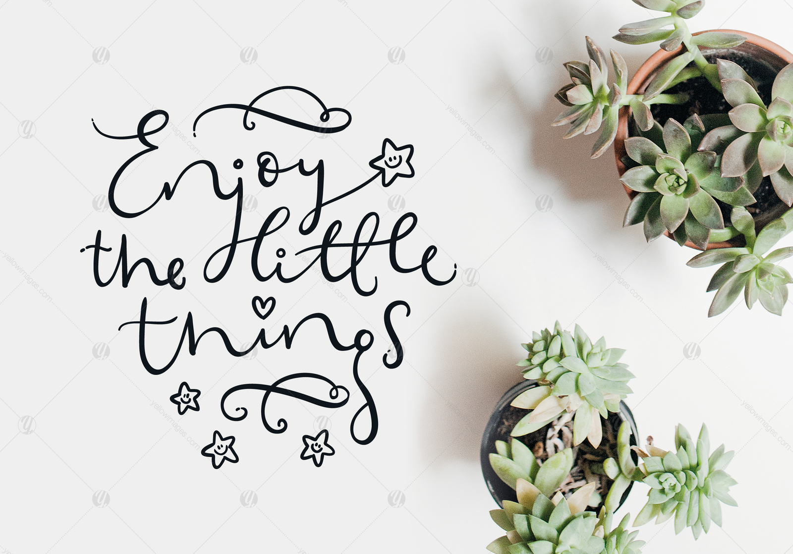 Enjoy the little things Vector Quote